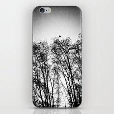 woods... iPhone & iPod Skin