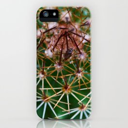 Cactus 3 iPhone Case