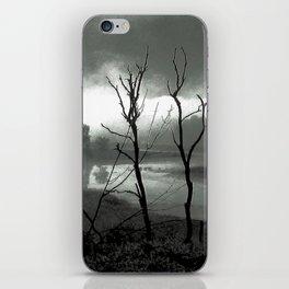 Quabaug River North Brookfield, MA iPhone Skin