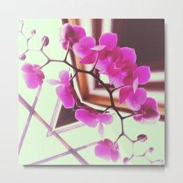 Orchid Manipulation Metal Print