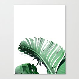Banana Leaves #3 Canvas Print