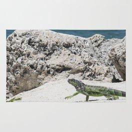 Key West Iguana Rug