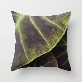 Leaf Line Art Elephant Ear Study Throw Pillow