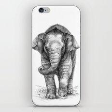 Baby Elephant - bis G046 iPhone & iPod Skin