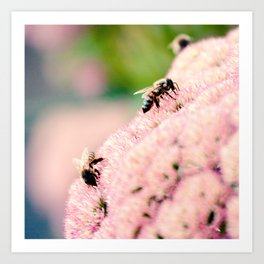 Bees on Flowers Art Print