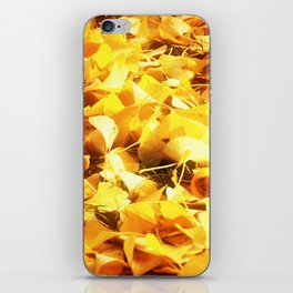 Golden Ginkgo Leaves iPhone Skin