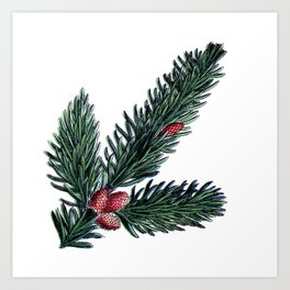 Christmas Pine Tree Art Print