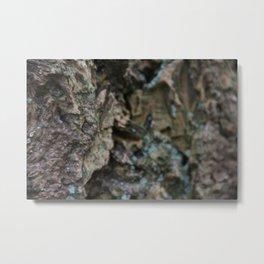 Magic bark Metal Print