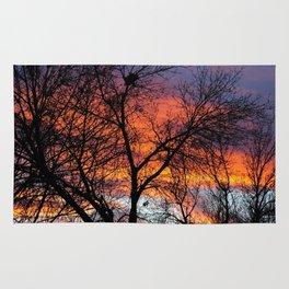 Winter Tree Sunset Rug