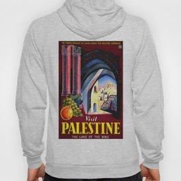 Palestine, vintage travel poster (2) Hoody