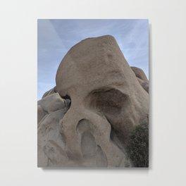 Skull Rock Metal Print