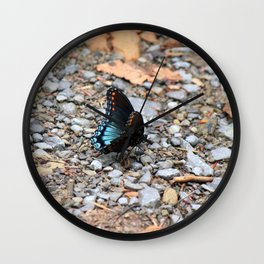 Red-spotted Purple Admiral Wall Clock