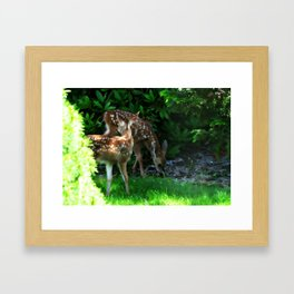 TWIN FAWNS  Framed Art Print