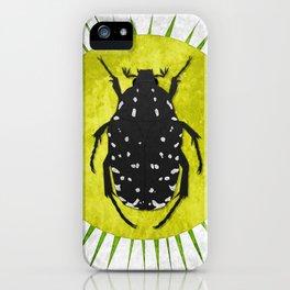 Oxythyrea funesta / Beetle 1 iPhone Case