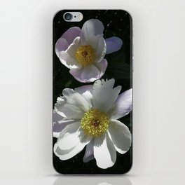 Blushing Peonies iPhone Skin