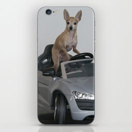 Doggy Driving iPhone Skin