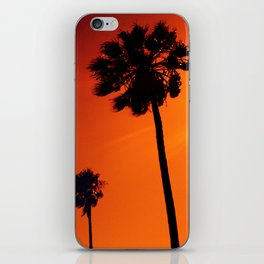 Palm Trees in the Sun iPhone Skin