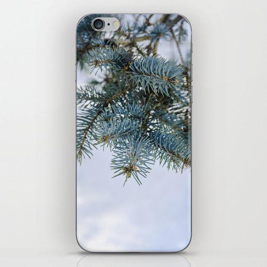 Blue Spruce iPhone & iPod Skin