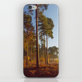 Rising Sun And Tree iPhone Skin