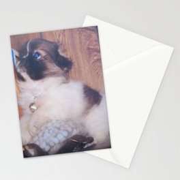 Dori sitting on our turtle night light Stationery Cards