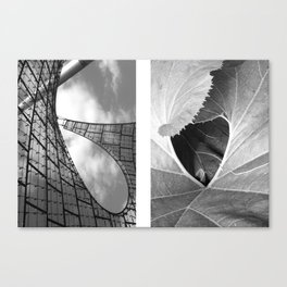 untold spaces Canvas Print