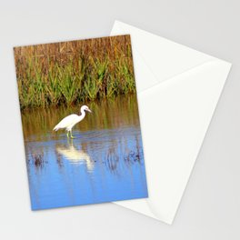 Snowy Egret With Intense Stare Stationery Cards