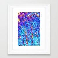 birch Framed Art Prints featuring Birch by Tru Images Photo Art