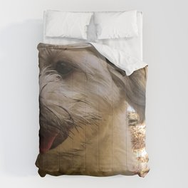 dirty puppy Comforters