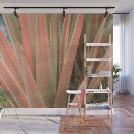Pink aloe Wall Mural