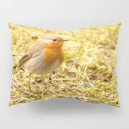 Hello Robin! Pillow Sham