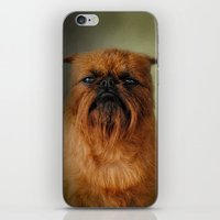 brussels iPhone & iPod Skins featuring The Brussels Griffon by Jai Johnson