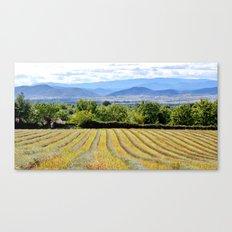 Entre montagnes et lavandes Canvas Print