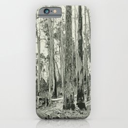 Vintage Print - The Birds of Tasmania (1910) - Eucalyptus Bark Ripped by Black Cockatoos iPhone Case