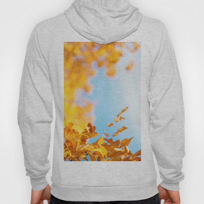 Golden Branch (Color) Hoody