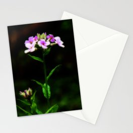 Springtime Phlox Stationery Cards