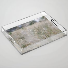Tall wild grass growing in a meadow Acrylic Tray