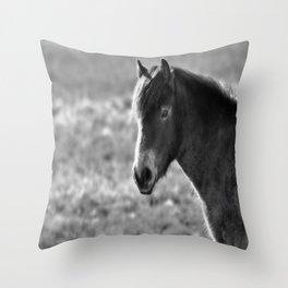 Pony on Exmoor Throw Pillow