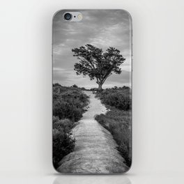 Windswept Tree at Fort Fisher NC -- Black and White Coastal Landscape iPhone Skin