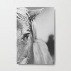 The Spirited Horse Metal Print