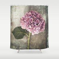 hydrangea Shower Curtains featuring Hydrangea  by Maria Heyens