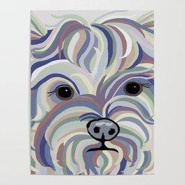 Yorkie Denim Colors Poster