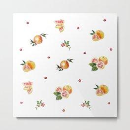 Fruits and berries-2 Metal Print