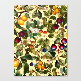 Vintage Fruit Pattern XXI Canvas Print