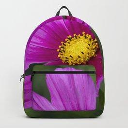 Look Here Backpack