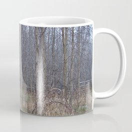 Fenced-in and Neglected Coffee Mug