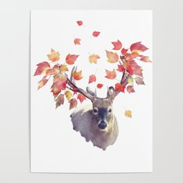 Deer male with autumn leaves . Autumn theme on white background. Poster