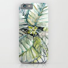 Poinsettia Watercolors Slim Case iPhone 6s