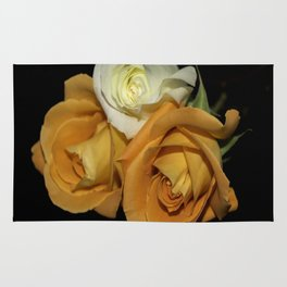 Two Orange Roses and One White Rug