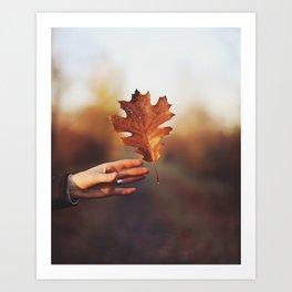 Catching a bit of Autumn Art Print