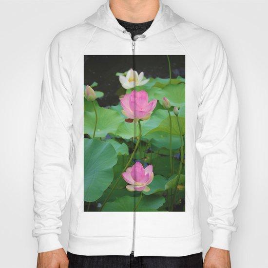 Lotus Blossom Flower 25 Hoody